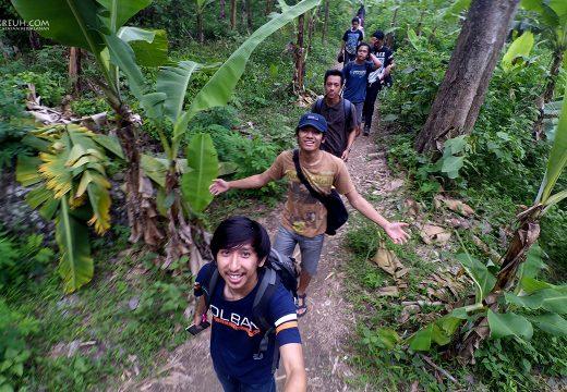 Nyusurin hutan