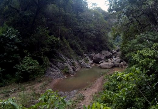 Nyusurin sungai