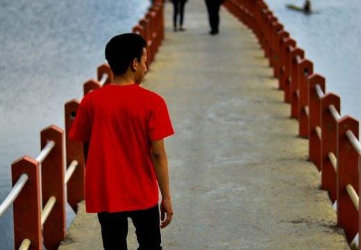 Foto di Jembatan Cileunca