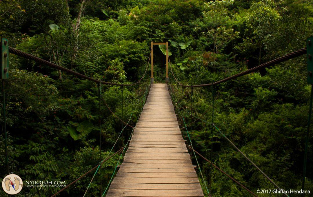 Jembatan Menuju Penangkaran Rusa
