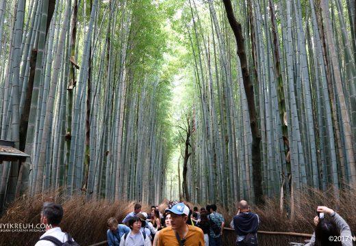 Namanya Arashiyama Bamboo Grove, isinya hutan bambu lucu gitu.