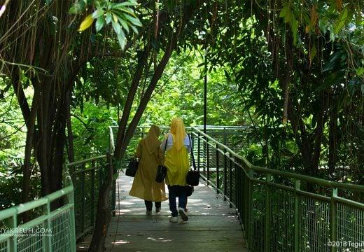 Berjalan santai bersama keluarga