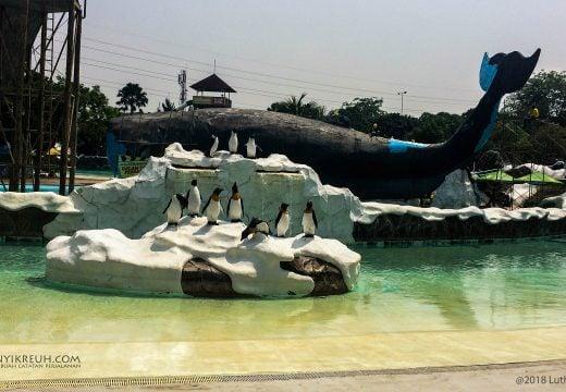 Patung Paus dan Pinguin