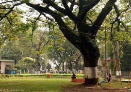 Taman Tematik yang Unik di Kota Bandung