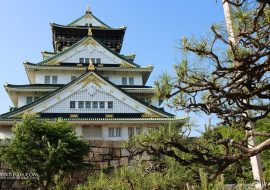 12 Hari Liburan di Kyoto-Osaka, Jepang